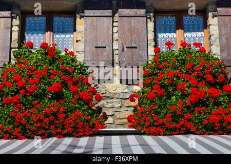 Overflowing Geraniums in window boxes, Yvoire, Haute Savoie - Stock Photo