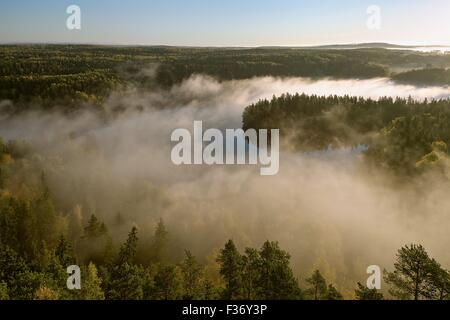 Thick fog covering the forest and the lake in early morning landscape. Peaceful view from the Aulanko lookout tower - Stock Photo