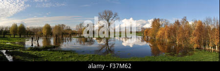 Panoramic landsape of flooded meadows with trees near the Mandelbeek stream in Gottem - Stock Photo