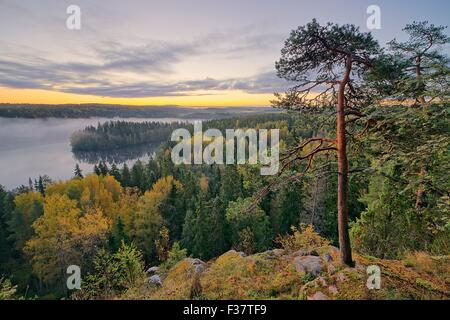 Foggy morning in the Aulanko nature reserve park in Finland. The sun is about to rise in the early morning. HDR - Stock Photo