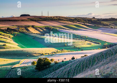Evening light over the Wiltshire countryside towards Morgan's Hill. - Stock Photo