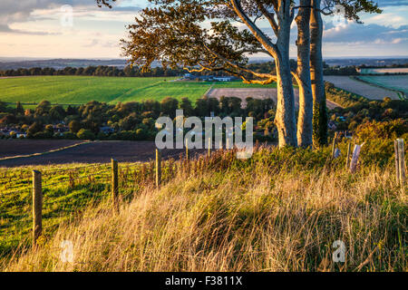 Evening light over the Wiltshire countryside at Cherhill. - Stock Photo