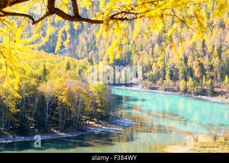 Altay. 1st Oct, 2015. Photo taken on Oct. 1, 2015 shows the autumn scenery of Kanas, northwest China's Xinjiang - Stock Photo