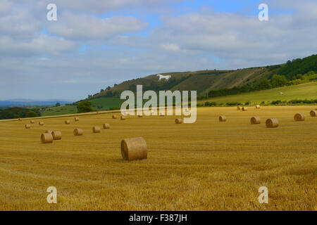 Westbury White Horse.Wiltshire,England - Stock Photo
