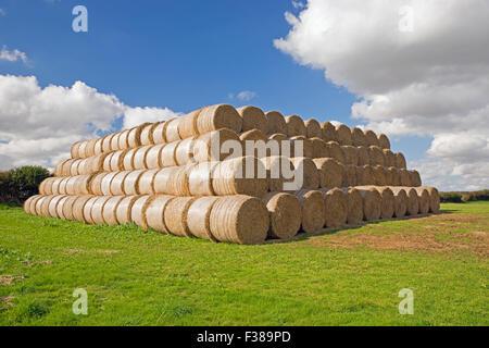 Stacked round hay bales UK - Stock Photo