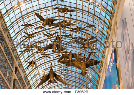 The flying birds sculpture at the Toronto Eaton Center designed by artist Michael Snow. Toronto Eaton Center is - Stock Photo