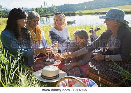 Women toasting wine glasses on picnic blanket - Stock Photo