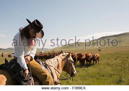 Female rancher horseback adjusting saddlebag herding cattle - Stock Photo