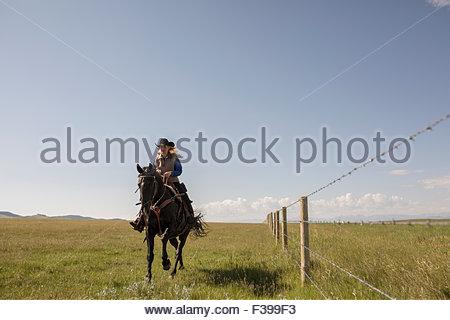 Female rancher galloping horseback in sunny rural field - Stock Photo