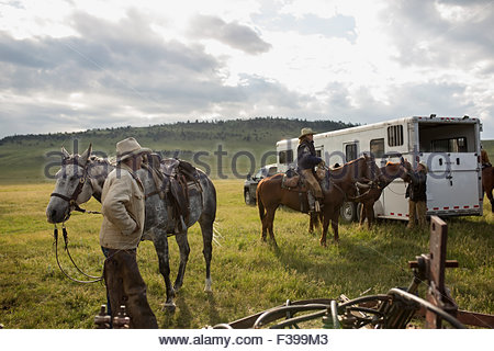 Ranchers preparing horses outside horse trailer in field - Stock Photo
