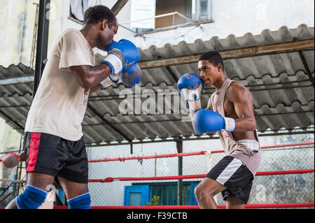 Two boxers fighting during boxing training at the Rafael Trejo Gym, in Havana, Cuba. - Stock Photo