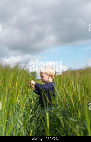 Side view of a boy standing in a field - Stock Photo