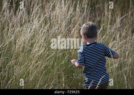 Rear view of a boy walking through long grass - Stock Photo