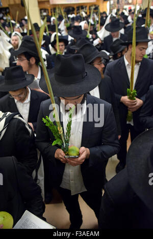 A group of religious Jewish men praying on Sukkot with the man in the center using a cell phone as a prayer book. - Stock Photo