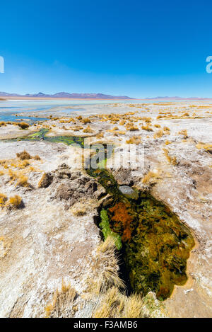 Colorful hot spring with deposits of minerals and algae on the Andean Highlands, Bolivia. Salt lake, mountain range - Stock Photo