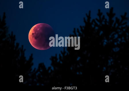 Super moon lunar eclipse 28.9.2015 in Finland - Stock Photo