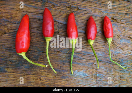 Five whole red chili pepper pods on an old rustic wooden table - Stock Photo