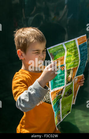 Six year old boy looking very confused as he tries to figure out where he is on the map at Woodland Park Zoo, Seattle, - Stock Photo
