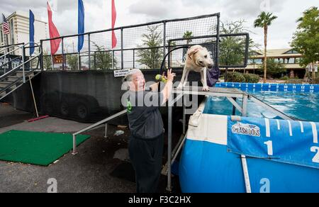 Las Vegas, Nevada, USA. 04th Oct, 2015. DONNA JONES, from San Francisco, gets a shower courtesy of her Labrador - Stock Photo