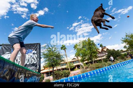 Las Vegas, Nevada, USA. 04th Oct, 2015. CHERYL DELSANGRO, of Las Vegas, and her Labrador Retriever, Mia, compete - Stock Photo