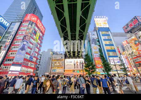 Busy pedestrian crossing in Akihabara known as Electric Town or Geek Town selling Manga based games and videos in - Stock Photo