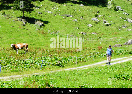 Female hiker photographed in Zillertal, Tirol, Austria - Stock Photo