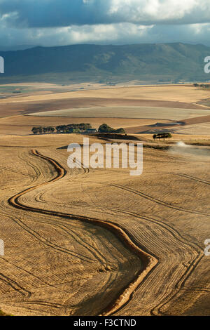 rolling farmland in the Overberg region near Villiersdorp, Western Cape, South Africa - Stock Photo