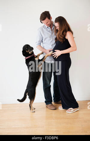 Portrait of couple with dog - Stock Photo