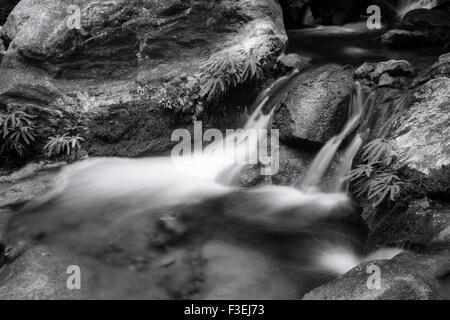 Cascade on Hare Creek, Limekiln State Park, Big Sur, California - Stock Photo