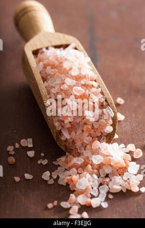 pink himalayan salt in scoop - Stock Photo