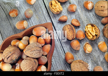 Hazelnuts and walnuts on a wooden table - Stock Photo