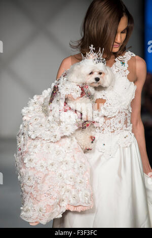 Canine couture by Anthony Rubio - Doggy Couture (USA) at Fashion Week Brooklyn, New York City - Stock Photo