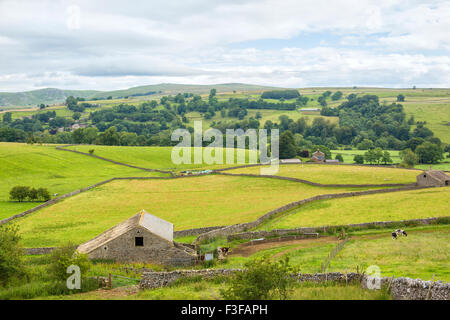 Beautiful landscape in the Yorkshire Dales near Malham - Stock Photo