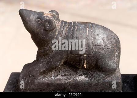 Richly stone carved Mouse vehicle of lord Ganesh at Shri Kanchi Kamkoti Peetam ; Sankarmath ; Rameswaram ; Tamil - Stock Photo