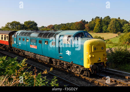 Class 55 Deltic 55019 arriving at Arley station on the Severn Valley Railway - Stock Photo