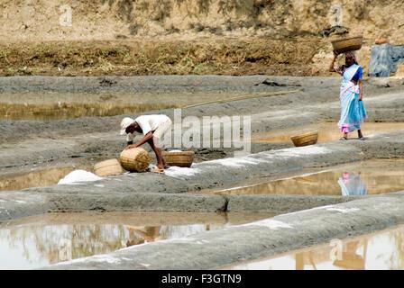 Workers at salt meadow or saltpans at village Shiroda ; district Sindhudurga ; Maharashtra ; India - Stock Photo