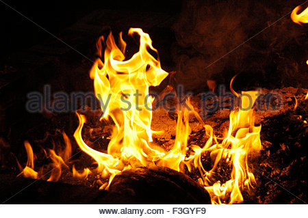 Fire in Yagna Kund - Stock Photo