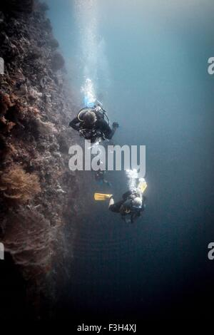 Scuba divers look down into the abyss, Raja Ampat, West Papua, Indonesia - Stock Photo