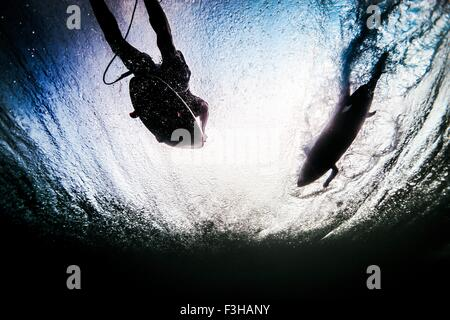 Low angle underwater view of two silhouetted surfers paddling through ocean waves in Bali, Indonesia - Stock Photo
