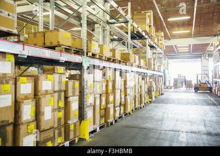 Forklift trucks working in distribution warehouse aisle - Stock Photo
