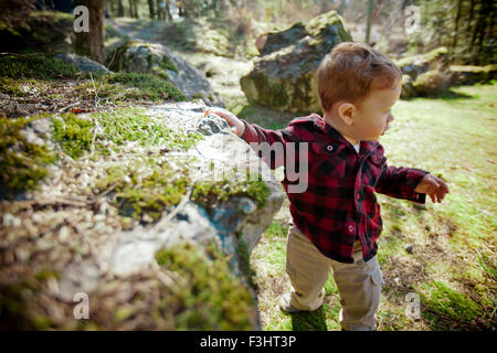 Young boy exploring nature - Stock Photo