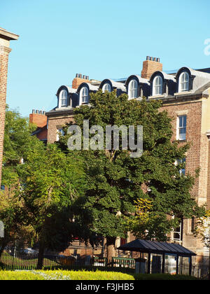 Newcastle Upon Tyne, 8th October 2015, UK Weather: Trees stand amongst period dwellings in the suburbs of the historic - Stock Photo
