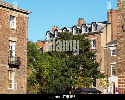 Newcastle Upon Tyne, 8th October 2015, UK Weather. Trees stand amongst period dwellings in the suburbs of the historic - Stock Photo