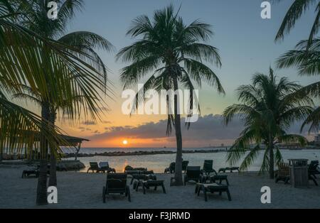 Palm trees on the beach with orange sunset and sun loungers - Stock Photo