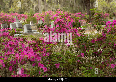 A colorful photograph of some flowers and gravestones in Bonaventure Cemetery in Savannah, Georgia. - Stock Photo
