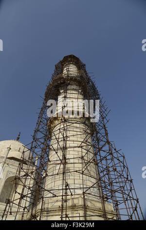 Taj Mahal white marble mausoleum pillar renovation Mughal architecture cleaning minar at southern bank  Yamuna River - Stock Photo