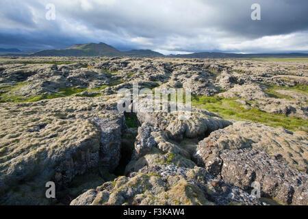 Moss-covered lava field near Hveragerdi, Sudherland, Iceland. - Stock Photo