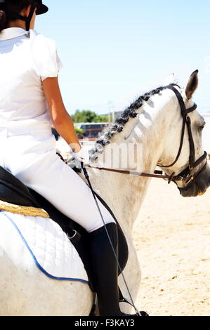 Riding a white gelded horse in a summer dressage competition - Stock Photo