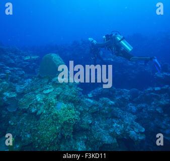 Underwater photo session, Cuba - Stock Photo