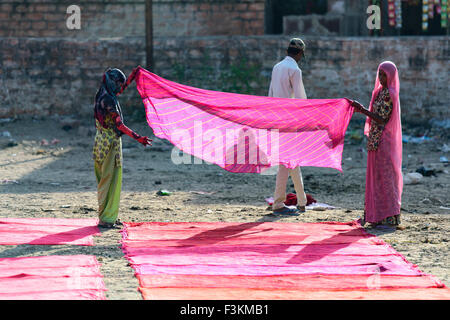 Dhobi Ghat in Jodhpur is a well known open air laundromat. The washers, locally known as Dhobis - Stock Photo